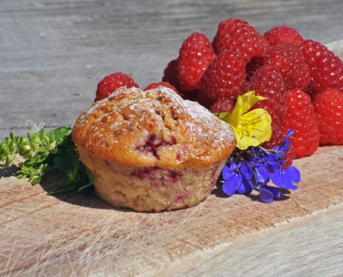 Muffin agriturismo il maggiociondolo di Schio in provincia di Vicenza